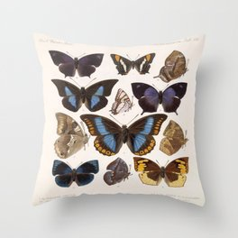 Vintage Scientific Insect Butterfly Moth Biological Hand Drawn Species Art Illustration Throw Pillow