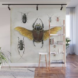 The Vintage Beetles Collection Wall Mural