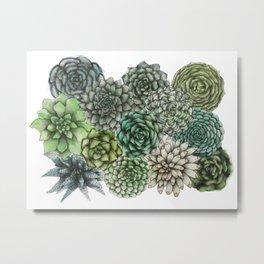 An Assortment of Succulents Metal Print