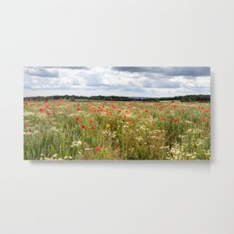 Panoramic Poppies Metal Print