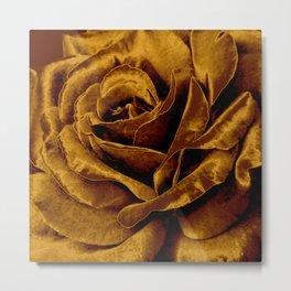 copper velvet rose Metal Print