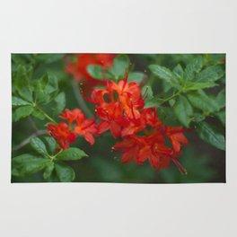 Floral Print 059 Rug