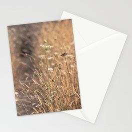 Azalea State Natural Reserve Trail Stationery Cards