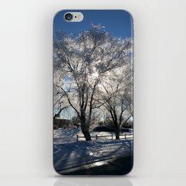 Sunshine in winter iPhone Skin