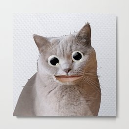 Cat With Googly Eyes Metal Print