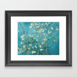 Almond Blossoms by Vincent van Gogh Framed Art Print