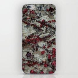Edera - Castello Banfi - Tuscany iPhone Skin