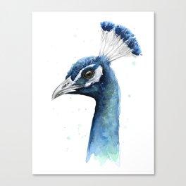 Peacock Watercolor Exotic Bird Animals Canvas Print