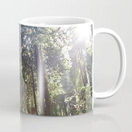 Redwoods Secret Staircase Coffee Mug