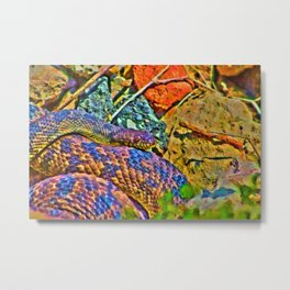 Colorful Snake Metal Print