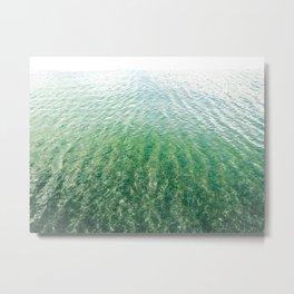 Quiescent Shore Metal Print