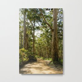 West Cape Howe National Park, Western Australia Metal Print