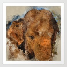 Elephant Watercolour Art Print