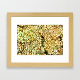 Dedicated Medicator pt.1 (LSD strain) Framed Art Print