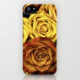 Golden Yellow Roses Pattern (Color) iPhone Case