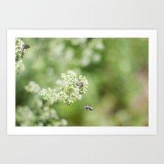 bee friends Art Print