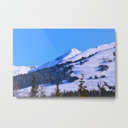 Back-Country Skiing  - IV Metal Print