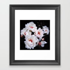 Flower (Magnificent) Framed Art Print