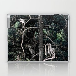 Family of Herons.... Laptop & iPad Skin