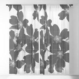 Primrose In BW Sheer Curtain