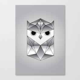 Owl. Canvas Print