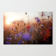 Beautiful Nature Canvas Print