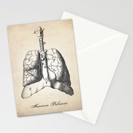 Human Anatomy Drawing Lungs Stationery Cards