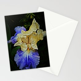 For Joan and Fred Stationery Cards
