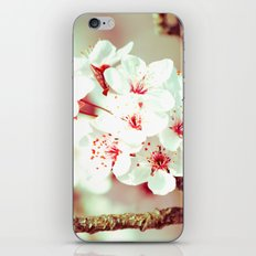 Cherry Blossom Flowers iPhone & iPod Skin