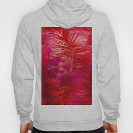 Hot Feathers Hoody