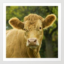 Hey Cow Art Print