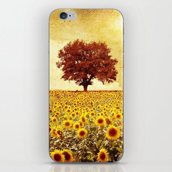 lone tree & sunflowers field iPhone & iPod Skin