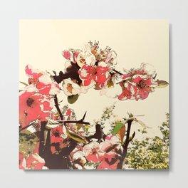 Hana Collection - Sakura Metal Print