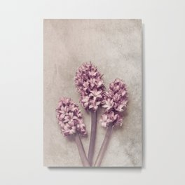Lovely pink Hyacinths Metal Print