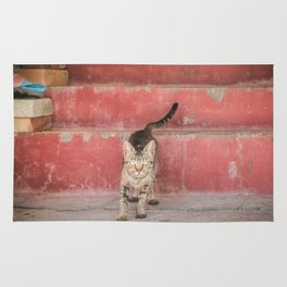 Cat in red stairs Rug
