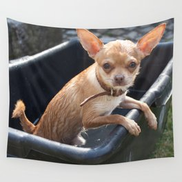 Wet Chihuahua Puppy Wall Tapestry