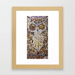 Crazy Owl Framed Art Print