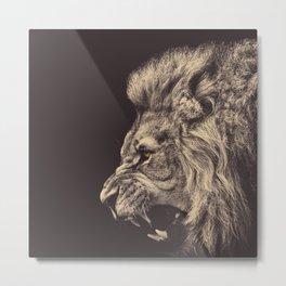 Angry male lion Metal Print