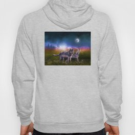 wolf and sky Hoody