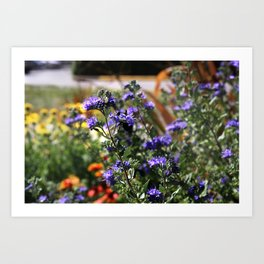 Vibrant Purple Flowers Art Print