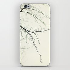 Isles iPhone & iPod Skin