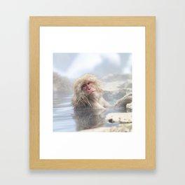Snow Monkey Hot Springs Framed Art Print
