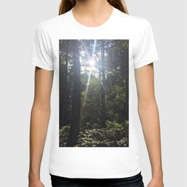 Light Through Trees 2. Rushmere Country Park, Bedfordshire T-shirt