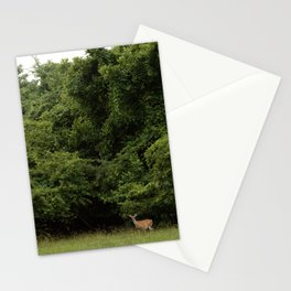 Hello Deer Stationery Cards