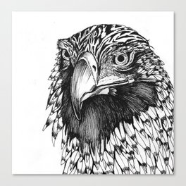 Wedge- Tailed Eagle Canvas Print