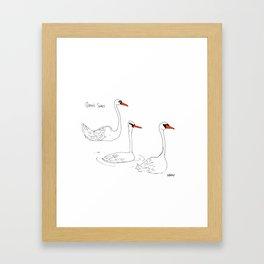 Queen's Swans Framed Art Print