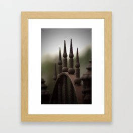 Rusted Gate to Nowhere... Framed Art Print
