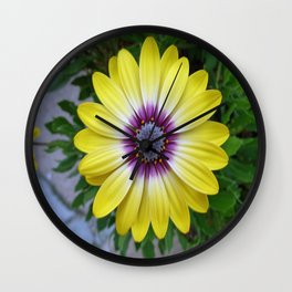 Pretty as Sunshine Wall Clock