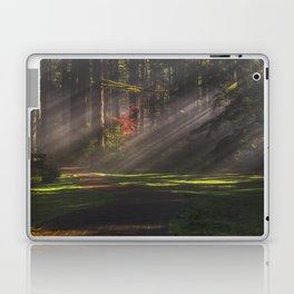 Silver Falls Historic District Laptop & iPad Skin