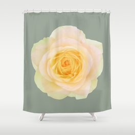 bed of roses: texas Shower Curtain